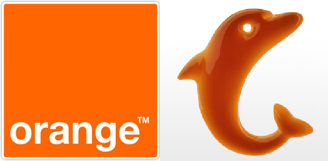 orange_logodelfin