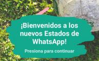 Todo lo que necesitas saber sobre la nueva actualización de Whatsapp