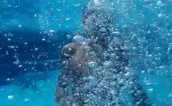 Tres trucos para sacarte fotos debajo del agua