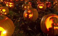 Fondos de pantalla y tonos de llamada para Halloween