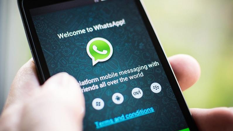whatsapp anunciantes