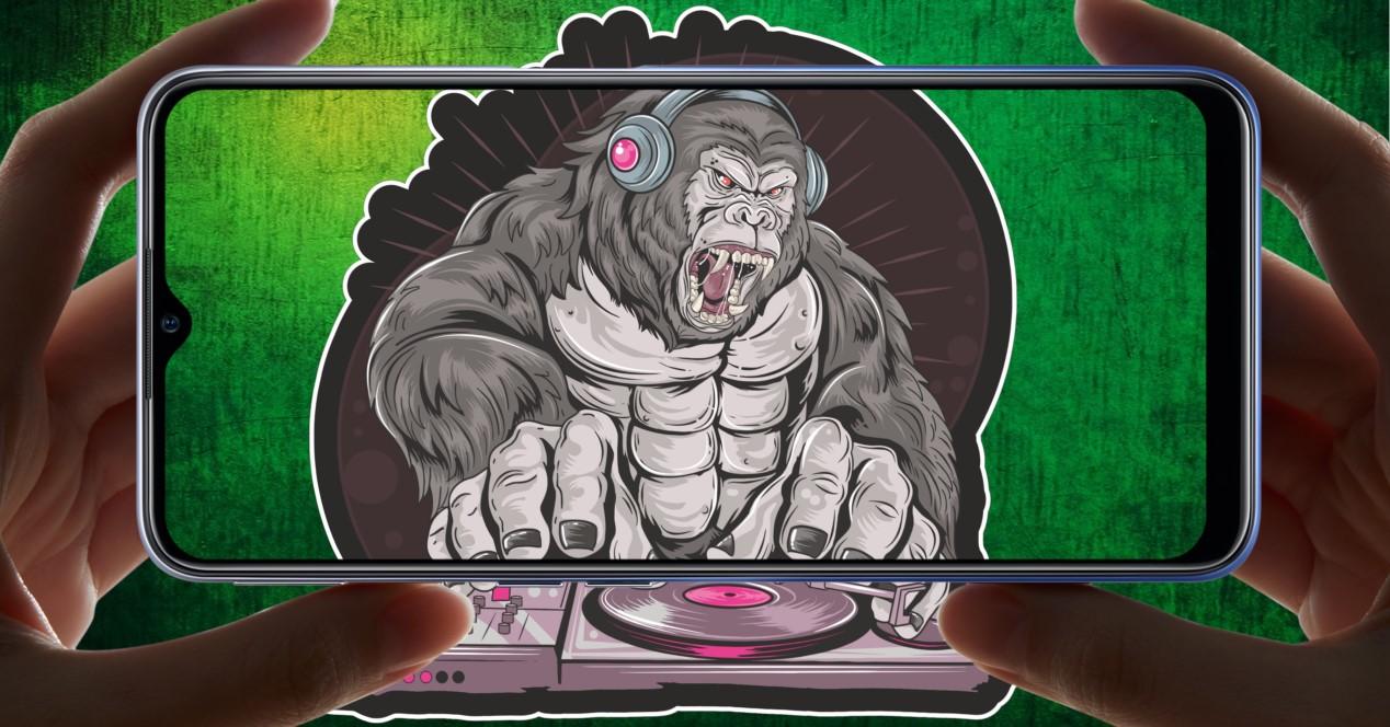 Gorilla Pinchando Y Un Movil