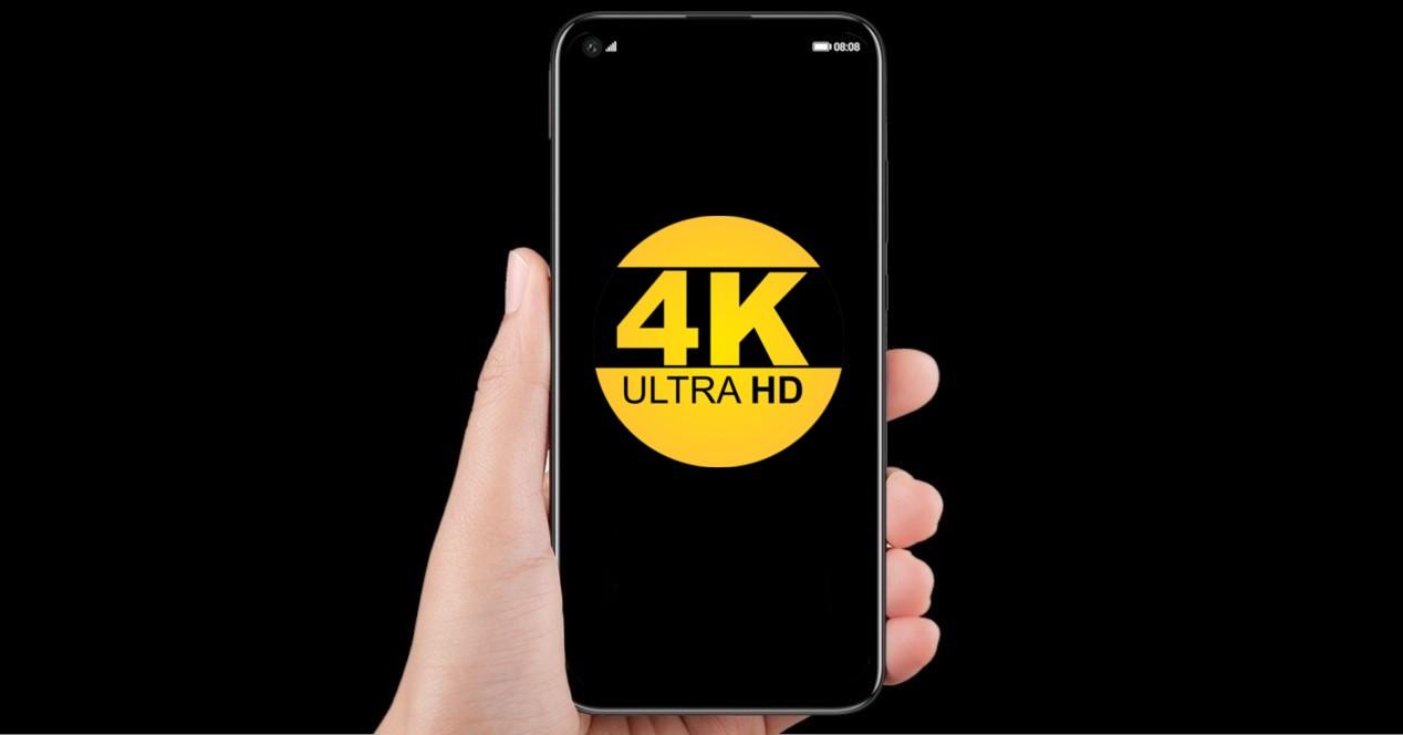 Huawei P40 Y Logos Resolucion 4k