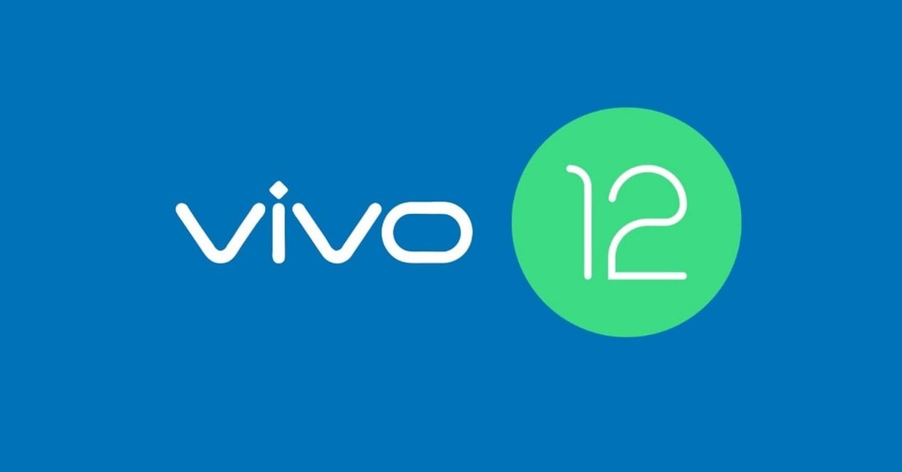 Vivo 12 Logo